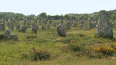 Alignements Carnac 2 Stock Footage