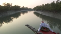 Sundarbans Stock Footage