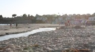Stock Video Footage of sunny day at capitola beach