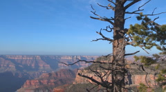Majestic Grand Canyon Vista - stock footage