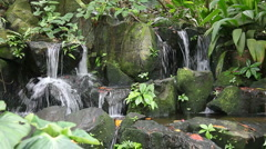 Waterfall and greenery - stock footage