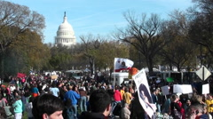 Huge crowds of protestors gather in Washington D.C. for a protest rally - stock footage