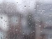 Rainy suburban window. SD. Stock Footage