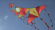 Stock Video Footage of Kites