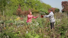 Mature male handing over plant in pot to female in garden centre Stock Footage