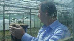 Scientist examining flora in a greenhouse Stock Footage