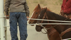 Two Horses by Fence with Cowboy Standing Up Stock Footage