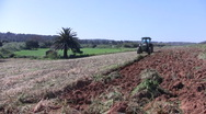 Stock Video Footage of Tractor in the fields from Portugal