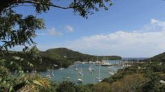 Antigua Nelson's Dockyard and tree branch Stock Footage