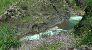 Stock Video Footage of Saar River and Saar Waterfall. Bloom, flowers, sunny day.