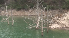 Green canyon 6 Stock Footage