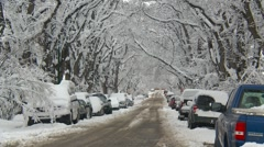 Winter day elm shrouded street with snow and parked cars, #1 medium Stock Footage