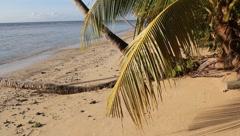 Caribbean Tropical Beach Stock Footage