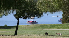 Boaters at the park Stock Footage