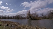 Timelapse of Pond, Trees, Clouds, and Wildlife - pan from right to left Stock Footage