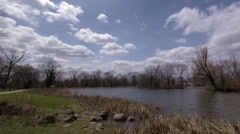 Timelapse of Pond, Trees, Clouds, and Wildlife - pan from left to right Stock Footage