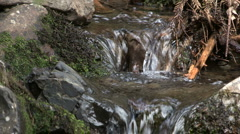 Little waterfall Stock Footage
