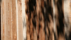 Fence with shadows of leaves Stock Footage