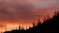 Fiery Arizona Hillside Sunset Time Lapse - stock footage