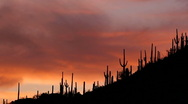 Stock Video Footage of Fiery Arizona Hillside Sunset Time Lapse