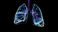 Human lungs Stock Footage