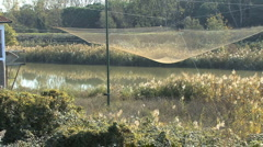 Italy Po delta fishing nets 2 Stock Footage