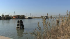Italy Po delta estuary with reeds Stock Footage