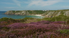 Treen Cliffs viewpoint in Cornwall, England. Stock Footage