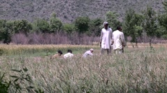 Farmers toil the fields of Abbottabad, Pakistan Stock Footage
