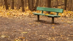 Green bench and leaves falling down in a park in Moscow Stock Footage