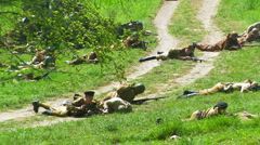 Fighters of Soviet Army.  Exemption Sapun mountains from the Nazi invaders. Stock Footage