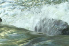 Creek Rushing over a Rock - NTSC - stock footage