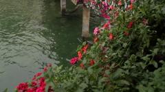 Luzern Chapel Bridge Flowers (HD) Stock Footage