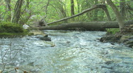 Mountain Creek Loop - HD 1080 Stock Footage