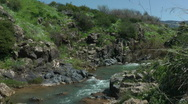 Stock Video Footage of Saar River and Saar Waterfall. Bloom, flowers, sunny day. Slow Motion.