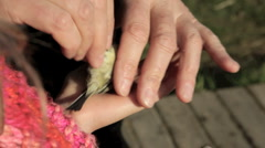 Young girl handling a small bird after it is banded - stock footage