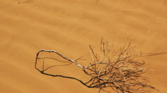 Stock Video Footage of Desert landscape with sand and wind