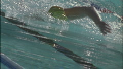 Swimmers race across a pool. Stock Footage