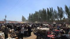 Kashgar livestock market - wide Stock Footage