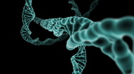 Stock Video Footage of DNA Strand flight through
