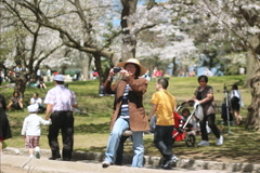 Taking pictures of blossoms. SD. Stock Footage