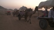 Stock Video Footage of Pushkar camel fair