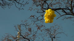 Balloons on a wind Stock Footage