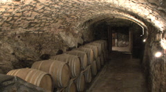 Tuscany winecellar with Sid Stock Footage
