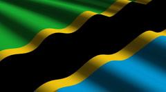 Tanzania flag close up Stock Footage