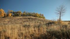 Central Idaho Autumn 26 29.97 Stock Footage