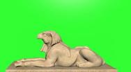 Sphinx Green Screen Stock Footage