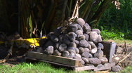 Stock Video Footage of Hawaii, MS Imu, Underground oven's Round Rocks