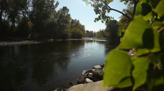 Fall River Leaves 16 29.97p Stock Footage