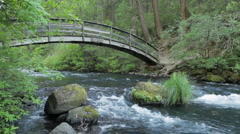 Burney Creek and Rainbow Footbridge, California - stock footage